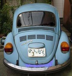 beetle3a3.JPG